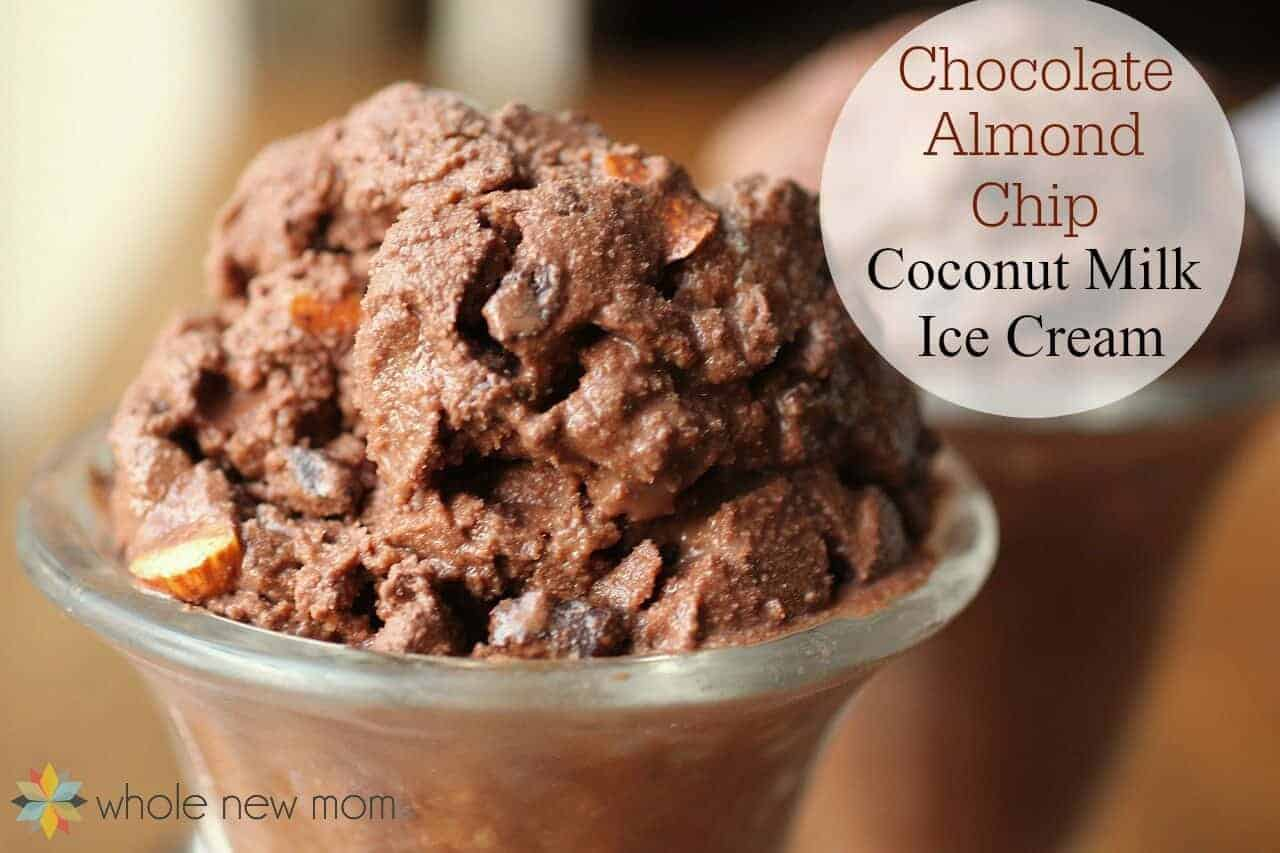 Chocolate Almond Chip Coconut Milk Ice Cream