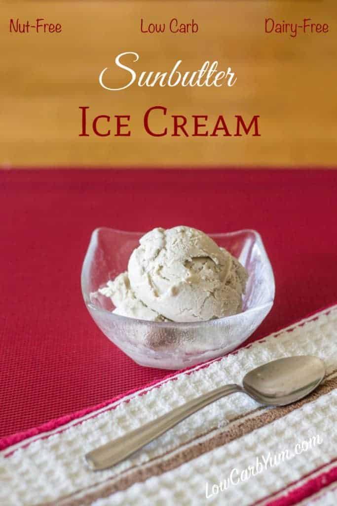 Sunbutter Ice Cream